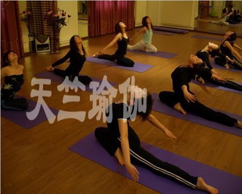 爱瑜伽这项运动爱瑜伽这份工作