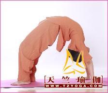 舞韵瑜伽(Dance  Yoga) : 陶冶情操 、健康、快乐
