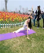 天竺瑜伽教练-高级教练凌红
