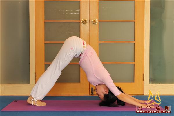 瑜伽优秀学员倪会利