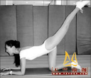 形体雕塑-天竺瑜伽,国际瑜伽学院