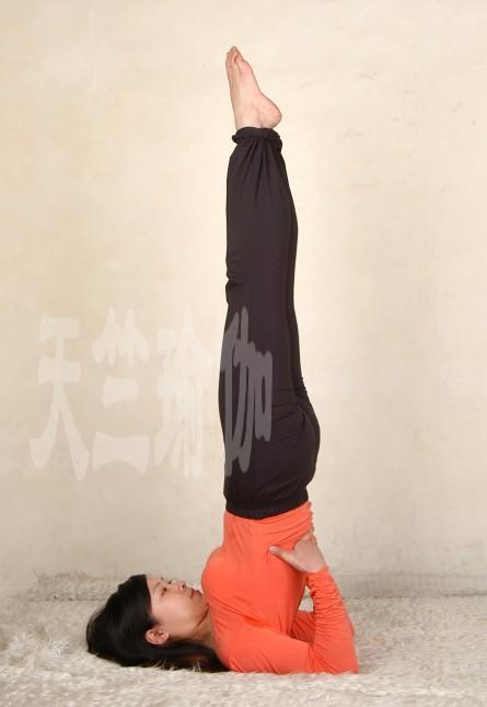 瑜伽优秀学员曾尚燕